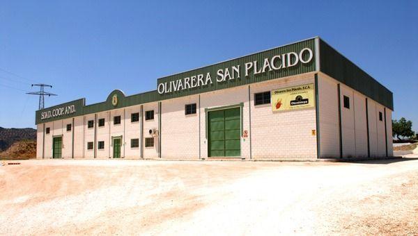 Almazara -Olivarera-San Plácido