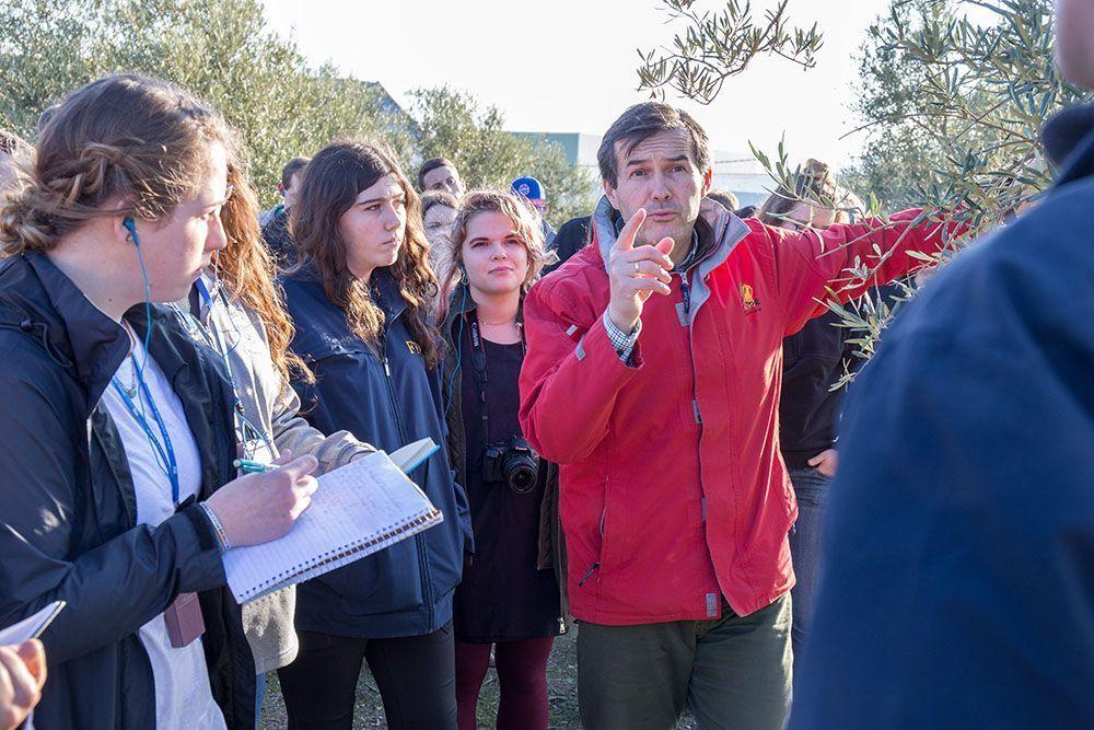visita a olivar de future farmers of america